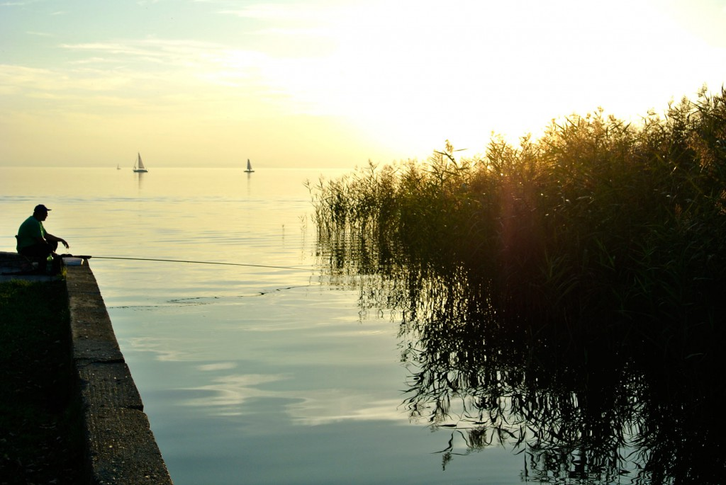 Silence in the autumn at Lake Neusiedl